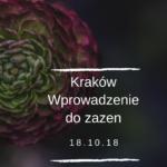 krakow-wprowadzenie-do-zazen